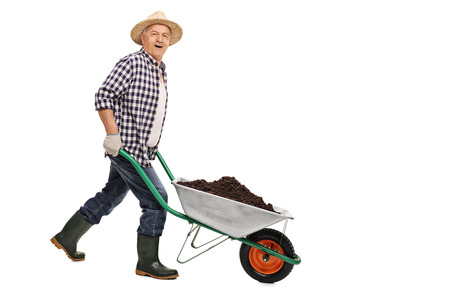 Mature gardener pushing a wheelbarrow full of dirt isolated on white background