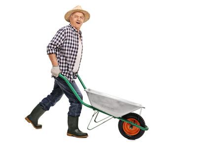 carretilla: jardinero maduro empujando una carretilla vacía y mirando a la cámara aislada en el fondo blanco