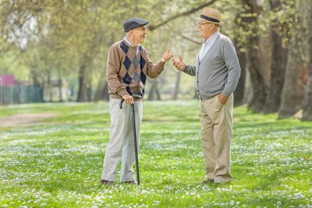 Due anziani in pensione che hanno una conversazione in un parco in una giornata di sole primaverile Archivio Fotografico