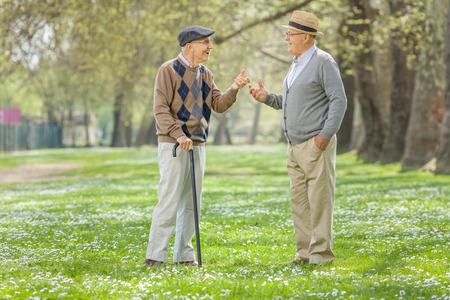 men talking: Two retired seniors having a conversation in a park on a sunny spring day