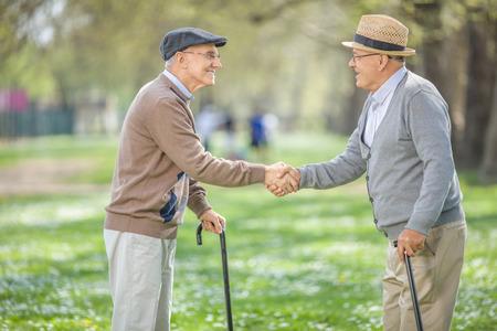 Dos viejos amigos que se encuentran en el parque y agitando las manos en un hermoso día de primavera Foto de archivo