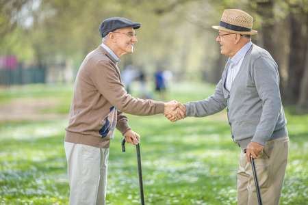 greets: Two old friends meeting in park and shaking hands on a beautiful spring day