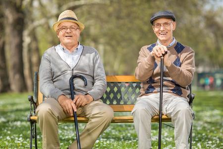persona sentada: Dos señores mayores alegres que se sientan en un banco de madera en un parque en un día soleado