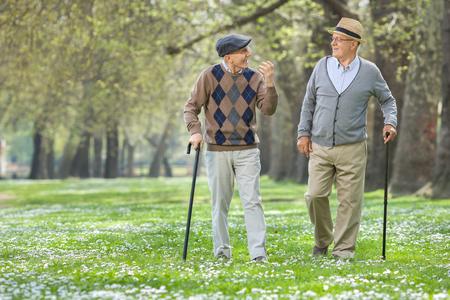 Twee vrolijke bejaarde mannen lopen in een park en een gesprek