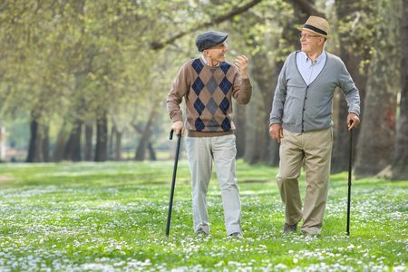 Two cheerful elderly men walking in a park and having a conversation