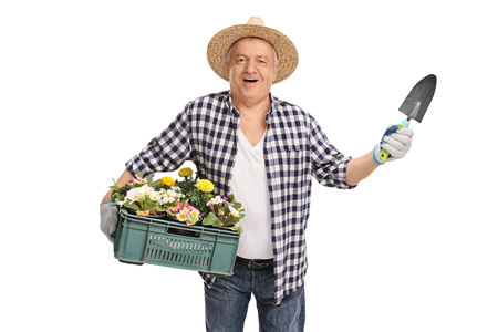 horticulturist: Cheerful mature horticulturist holding a rack of flowers and a small spade isolated on white background Stock Photo