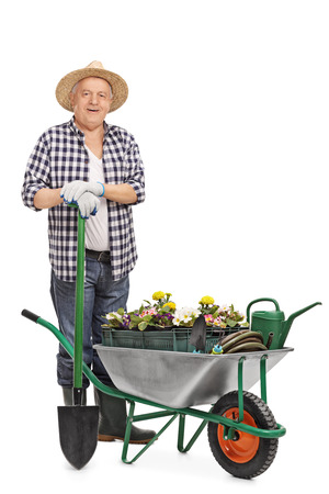Full length portrait of a mature gardener posing behind a wheelbarrow full of flowers and gardening equipment isolated on white background