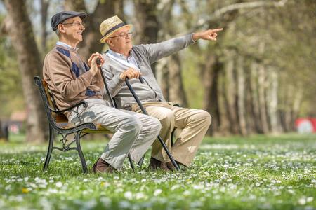 gente sentada: Mayor que muestra algo en la distancia a su amigo sentado en un banco en el parque