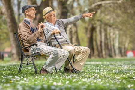 sitting people: Senior showing something in the distance to his friend seated on a bench in park