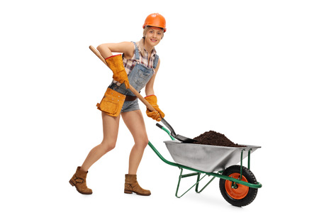 shoveling: Female construction worker shoveling dirt out of a wheelbarrow isolated on white background