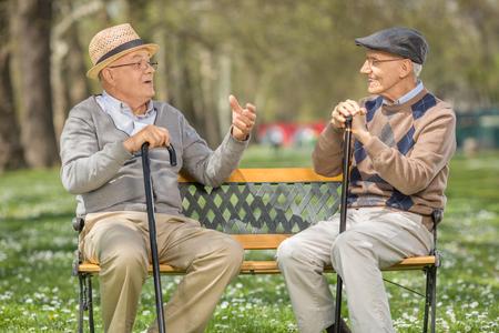Twee vrolijke senior heren praten met elkaar gezeten op een bankje in een park