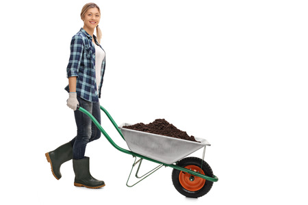 wheelbarrow: Full length portrait of a young woman pushing a wheelbarrow full of dirt isolated on white background