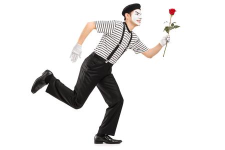 mimo: mimo corriendo y sosteniendo una flor rosa aislado en el fondo blanco