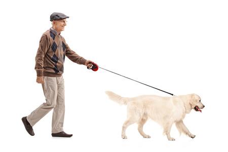 Mature man walking his dog isolated on white background Stock Photo