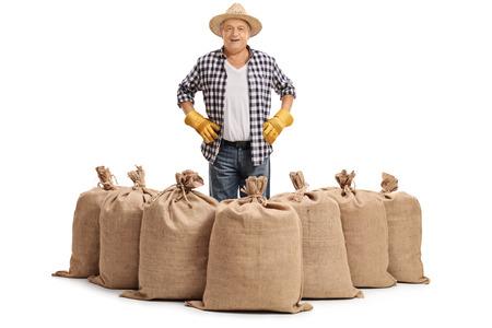sackful: Mature farmer standing behind burlap sacks isolated on white background Stock Photo