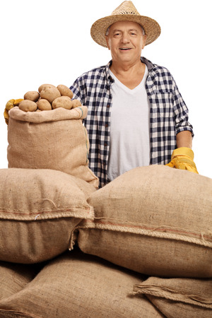 sackful: Mature agricultural worker posing with burlap sacks filled with potatoes isolated on white background