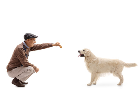 man kneeling: Mature man kneeling and giving a cookie to a dog isolated on white background