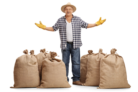 sackful: Full length portrait of a mature farmer standing between burlap sacks and gesturing with his hands isolated on white background