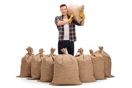 sackful: Agricultural worker standing behind burlap sacks and holding a sack on his shoulder isolated on white background