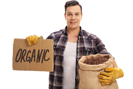 sackful: Young farmer holding a burlap sack filled with coffee beans and a cardboard sign that says organic isolated on white background
