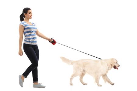 persona caminando: Plano general Perfil de cuerpo de la mujer paseando a su perro aislado en el fondo blanco Foto de archivo
