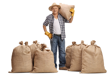 redneck: Full length portrait of a mature farmer with a burlap sack on his shoulder standing between piles of sacks isolated on white background