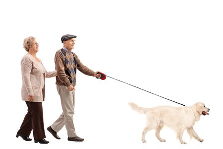 Full length portrait of an elderly couple walking a dog isolated on white background 스톡 콘텐츠