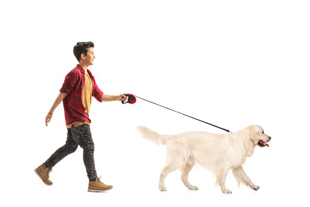 Full length portrait of a little boy walking a dog isolated on white background