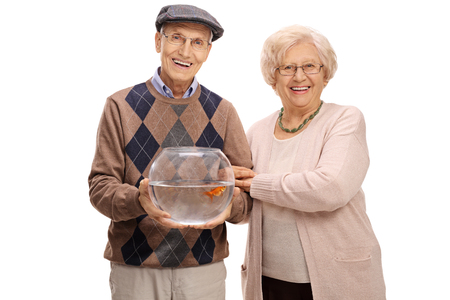 goldenfish: Joyful mature couple with a goldfish in a bowl isolated on white background Stock Photo