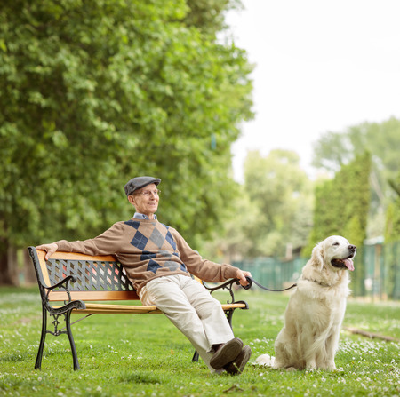 Elderly man with a dog sitting on a wooden bench in the park