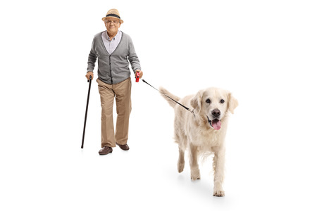 Full length portrait of a mature man walking a dog isolated on white background
