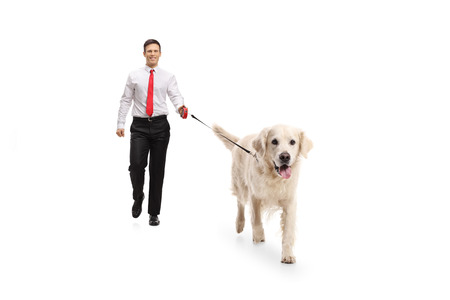 Full length portrait of an elegant guy walking a dog isolated on white background Banque d'images