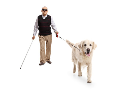 Full length portrait of a blind mature man walking with a stick and a dog isolated on white background