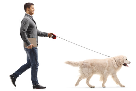 Full length profile shot of a man with a book walking a dog isolated on white background Stock Photo