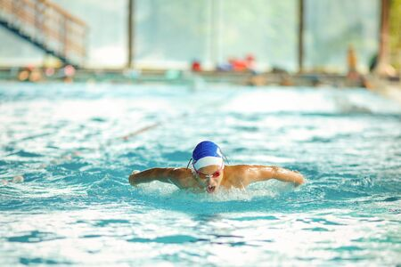 Young male swimmer swimming in a pool 写真素材