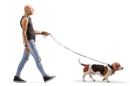 Ujęcie profilowe pełnej długości łysego mężczyzny w podartych dżinsach spacerującego z psem basset hound na białym tle