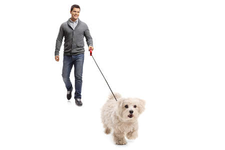 Full length portrait of a young man walking towards camera with a maltese poodle dog on a lead isolated on white background