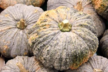 Pumpkins Stock Photo - 13234999