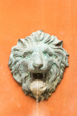 sprayed: Stucco face of a lion is water was sprayed.