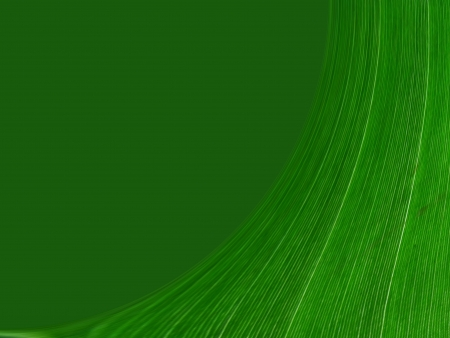 design of green abstrcat seamless fine patterns as texture and background photo