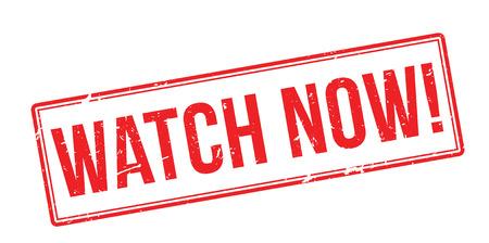symbol vigilance: Watch Now! Red rubber stamp on white. Print, impress, overprint.