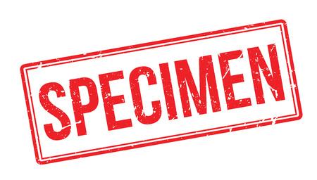 Exemplar: Specimen rubber stamp on white. Print, impress, overprint. Illustration