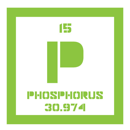 atomic number: Phosphorus chemical element. Highly reactive element. Colored icon with atomic number and atomic weight. Chemical element of periodic table.