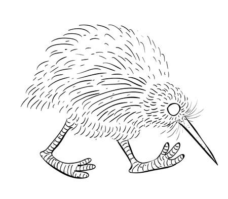 1102 Kiwi Bird Cliparts Stock Vector And Royalty Free Kiwi Bird