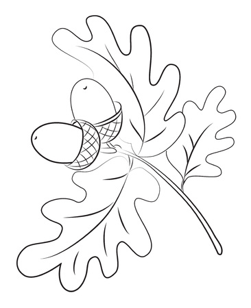 Cartoon image of acorns. An artistic freehand picture.
