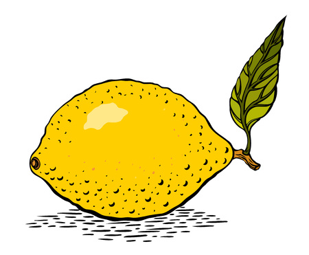 Cartoon image of lemon. An artistic freehand picture.