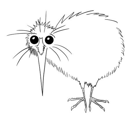 Cartoon image of kiwi bird Çizim