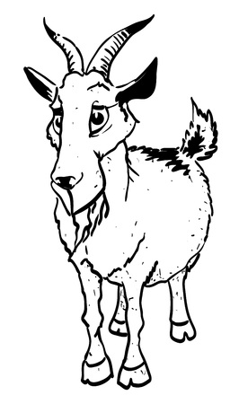herder: Cartoon image of goat