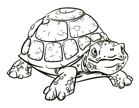 free clip art: Cartoon image of turtle Illustration