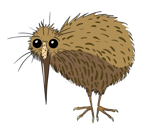 Cartoon image of kiwi bird Vectores